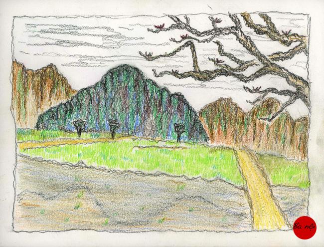 paysage-vietnam-riziere-dessin