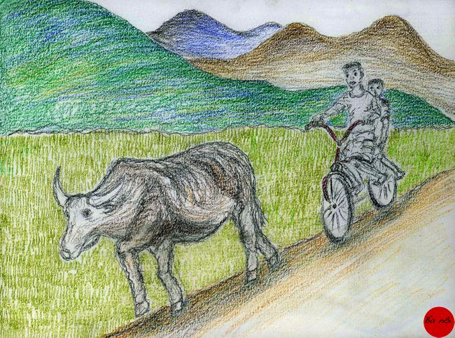 buffle-enfants-velo-campagne-vietnam- paysage