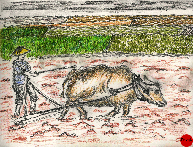 paysans-campagne-vietnam-buffle-dessin