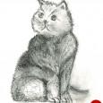 """Le chat Il était une fois un mandarin qui possédait un chat et l'aimait énormément. Il en était si fier, il le trouvait si extraordinaire qu'il décida de le nommer...<div class=""""addthis_toolbox addthis_default_style addthis_"""" addthis:url='http://ba-noi.com/blog/conte-du-vietnam-le-chat/' addthis:title='Conte du Vietnam – Le chat ' ><a class=""""addthis_button_preferred_1""""></a><a class=""""addthis_button_preferred_2""""></a><a class=""""addthis_button_preferred_3""""></a><a class=""""addthis_button_preferred_4""""></a><a class=""""addthis_button_compact""""></a></div>"""